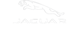 jaguar car detailing