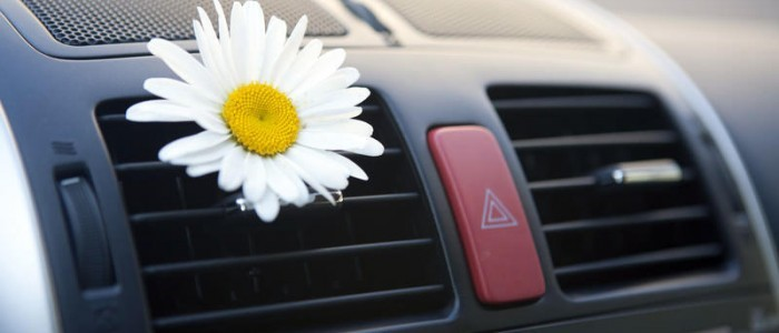 Get Your Car Smelling Clean